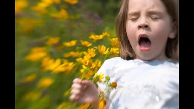 Wild Weather May Mean Allergy Nightmare