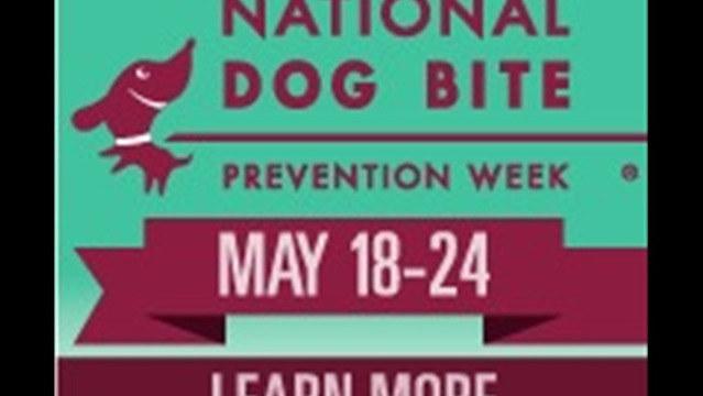 National Dog Bite Prevention Week, Is Your Pup Properly Prepped?