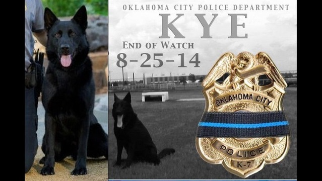 OKC Police Dog Stabbed to Death in the Line of Duty