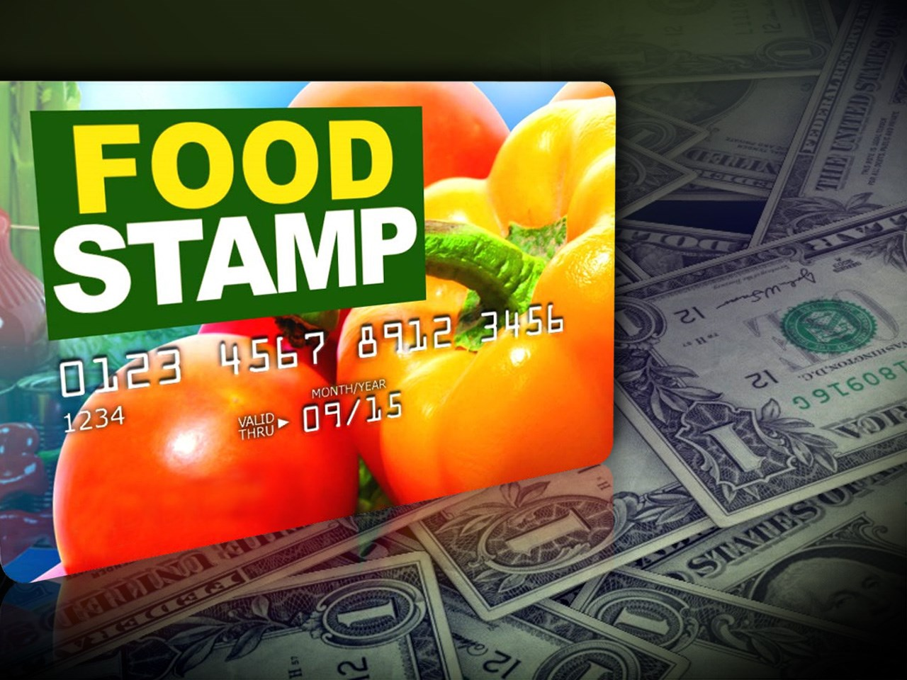 essay on food stamps Snap began as the food stamp program, first established in 1933 as a part of the agricultural adjustment act.