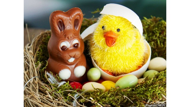 Ancaster Community Services hosts Annual Easter Treasure Hunt
