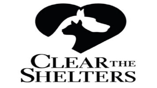 KGNS getting ready to Clear the Shelters!