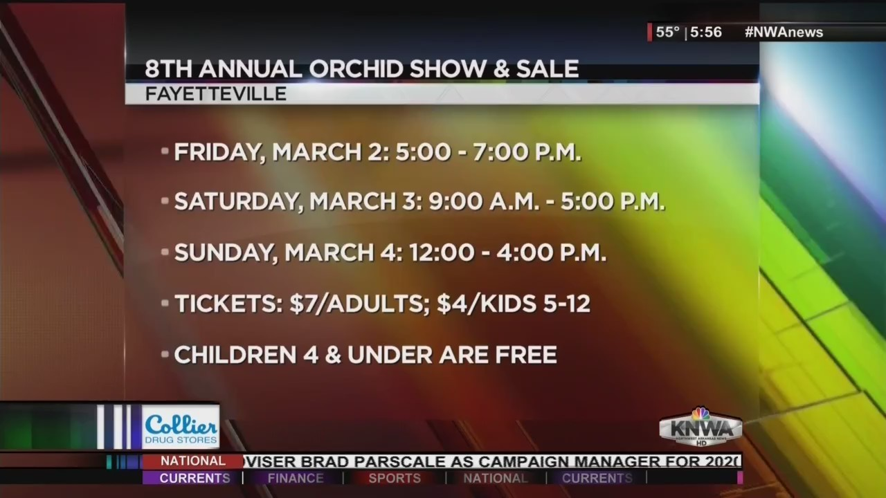 KNWA Today: 8th Annual Orchid Sale and Show