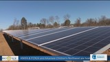 Solar Energy Shines in Arkansas